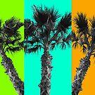 Tropical Palms  by Cody  VanDyke