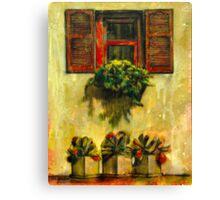 Red Window Canvas Print