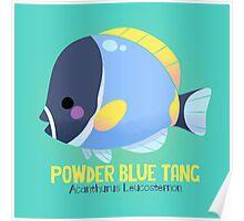 Powder Blue Tang 2 Poster