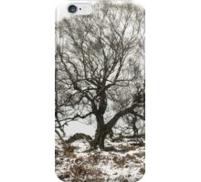 Surrounded by Winter iPhone Case/Skin
