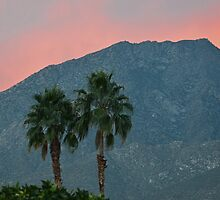 Palm Springs Dusk  by Cody  VanDyke