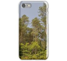 forest trees iPhone Case/Skin