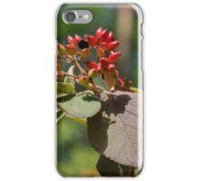 flower in nature iPhone Case/Skin