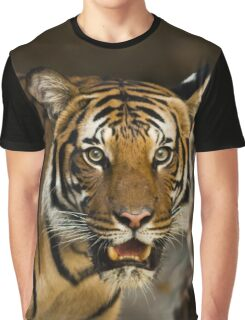 Tiger Wildcat Graphic T-Shirt