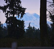 Mt. Rainier by Alemay