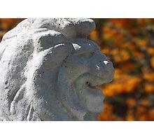 Stone Lion Photographic Print