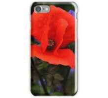 Red Poppy & Jacob's Ladder iPhone Case/Skin