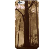 My Winter Solace iPhone Case/Skin