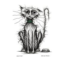 Ugly cat Photographic Print