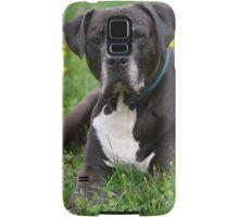 American Pitt Bull Terrier Samsung Galaxy Case/Skin