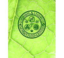 Hero's Mark (Green) Photographic Print