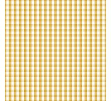 Designer Fall 2016 Color Trends-Spicy Mustard Yellow Gingham Check Photographic Print