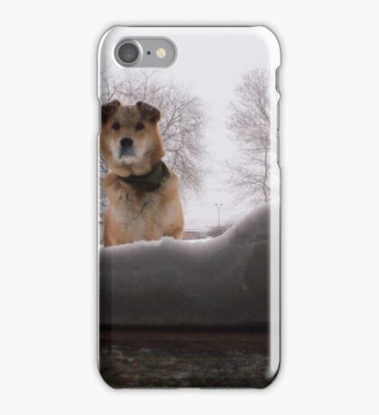 Snow day. iPhone Case/Skin