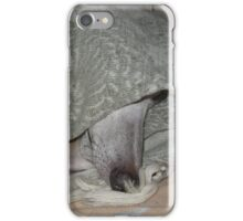 Needle Nose Hidden Whippet iPhone Case/Skin