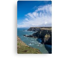 Rocky Cliff Face Canvas Print