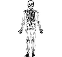 Skeleton Photographic Print