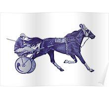 Sport horses Poster