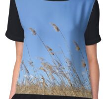 Reeds Moved by the Wind Chiffon Top