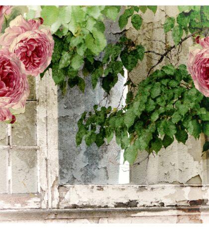 Cottage Window Shabby Roses Sticker
