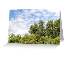Cloudy Sky Over the trees Greeting Card