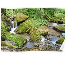 Mossy Green Brook Poster