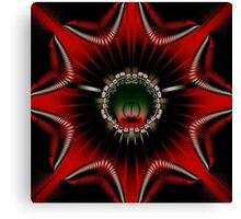 red abstract kaleidoscope Canvas Print