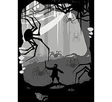 The Little Limbbit and the Spiders Photographic Print