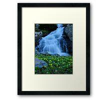Robinson Falls Framed Print