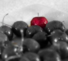 Plate of Cherries - Selective Coloring Sticker