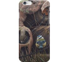 On the activities of primates and passerines iPhone Case/Skin