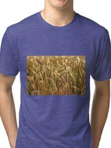 Ripening Wheat Field Tri-blend T-Shirt