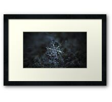 Starlight, panoramic version Framed Print