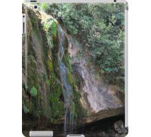 water falls iPad Case/Skin