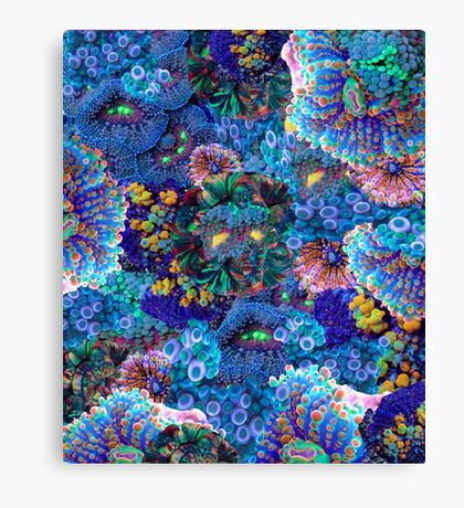 Serene Reef Canvas Print