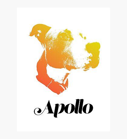 Apollo Photographic Print