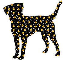 Halloween Labrador Retriever Photographic Print