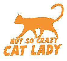 Not so CRAZY cat lady! by jazzydevil