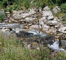 River Campdevanol by arnau2098