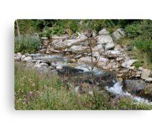 River Campdevanol Canvas Print