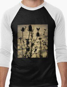 Teasel  Fairies Men's Baseball ¾ T-Shirt
