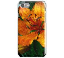 orange lily iPhone Case/Skin