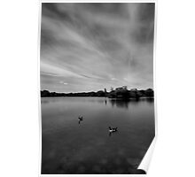 Thatcham Lakes in Black and White. Poster