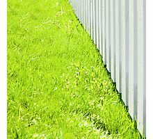 White fence and fresh green grass close-up Photographic Print