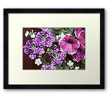 Pretty Faded Purple and Pink Flowers Framed Print