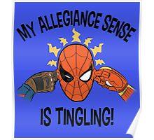Sense of Allegiance Poster