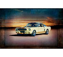 1966 Shelby GT350H Photographic Print