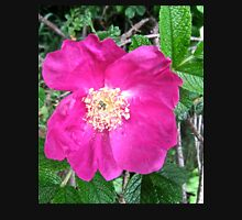 Wild Pink Rose Unisex T-Shirt