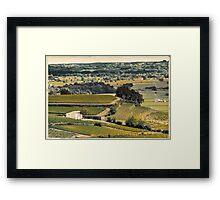vintage vineyard landscape Framed Print