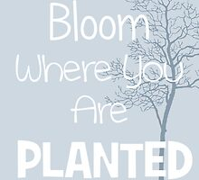 Bloom Where You Are Planted by PatiDesigns
