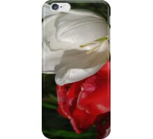 tulips red and white iPhone Case/Skin